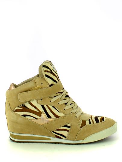 Женские демисезонные кеды ash jazz  (combo b),кроссовки женские, кожа/пони кремовый бежевые   9ah.ah32055.т купить в официальном магазине AshRussia.ru